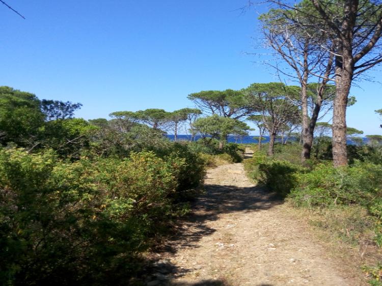 Singlereis Sardinie WANDEL EN WELLNESS