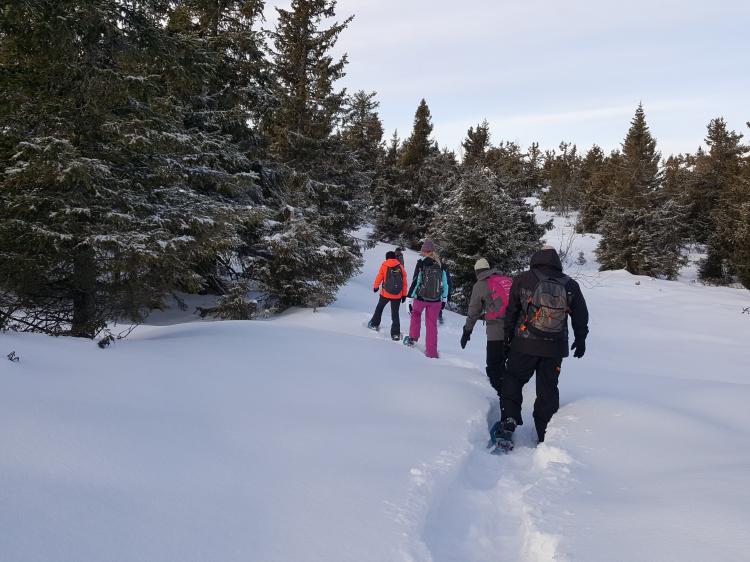 Singlereis Actieve Winterreis VERRASSEND NOORWEGEN