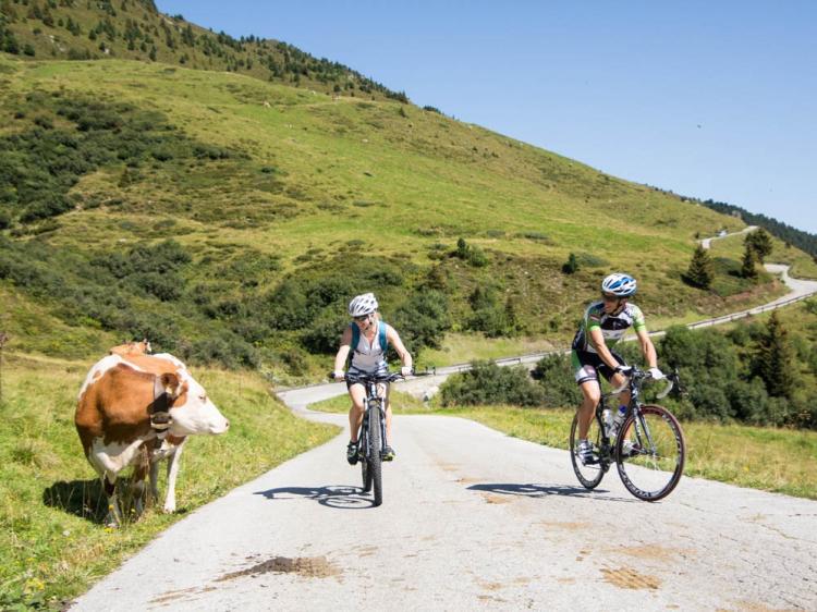 Singlereis Hike en Bike IN DE ALPEN