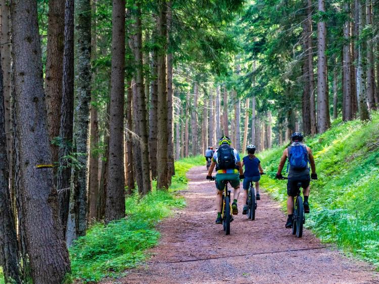 Singlereis Actieve vakantie IN OOST - NEDERLAND
